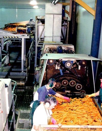 kalfresh-vegetables-_0001_carrot-processing