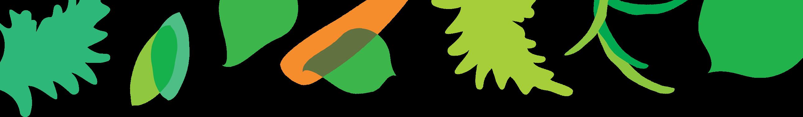 Kalfresh-vegetables-banner